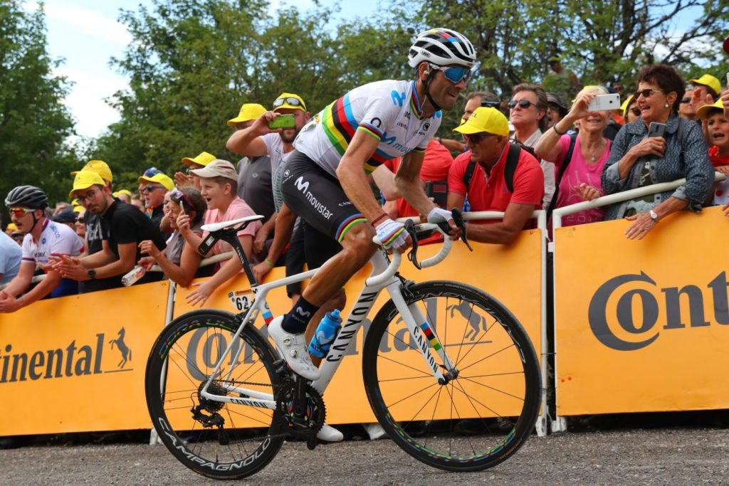 Alejandro Valverde y Canyon del 2019 campeón del mundo
