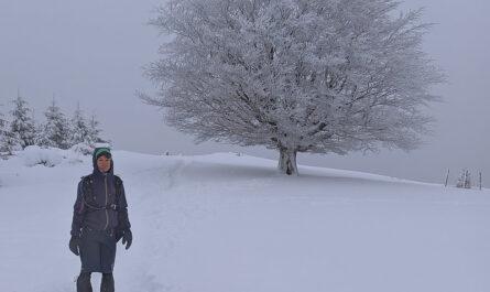 Nieve en Elgoibar